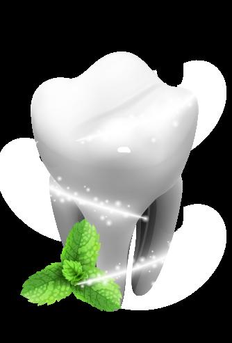 Diente con hojas de menta
